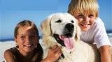 Familienurlaub mit Tieren